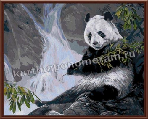 Панда у водопада