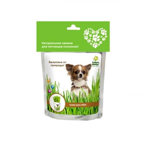 Набор для выращивания Трава для собак hp-42