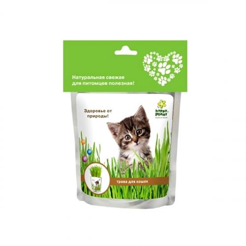 Набор для выращивания Трава для кошек hp-41