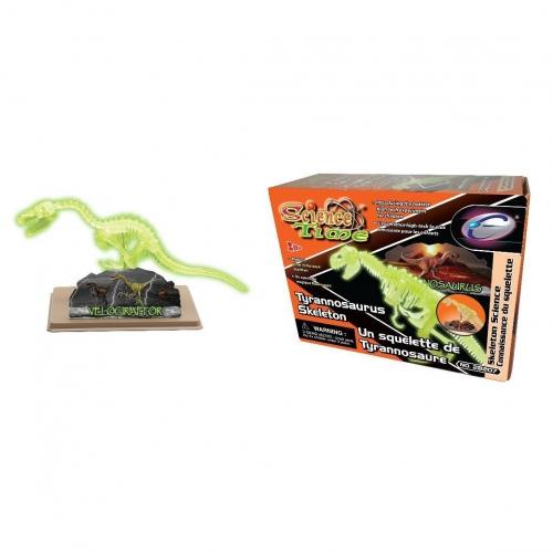 Наглядное пособие Скелет Тиранозавра 28207