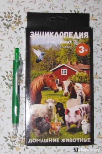 Энциклопедия в карточках.Домашние животные
