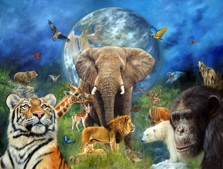 себя животные планеты земля картинки пусть каждый