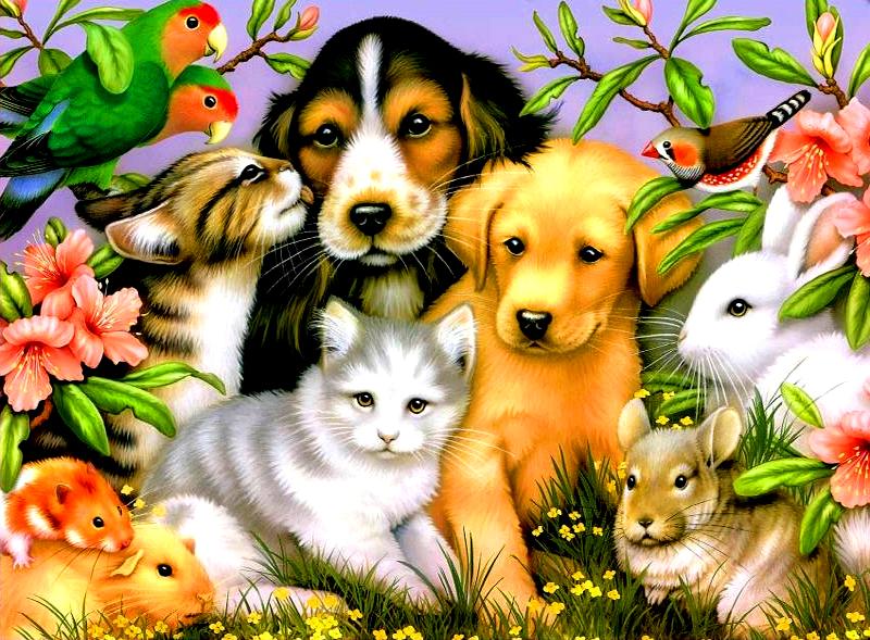 Пожеланиями для, открытки про зверей