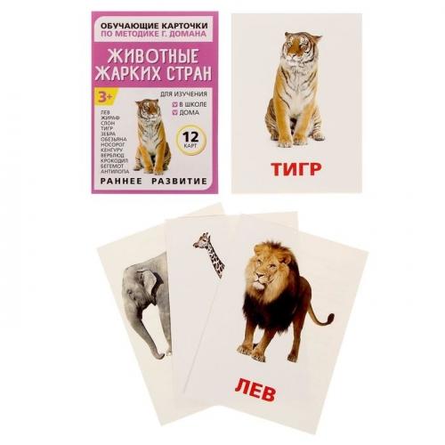 Обучающие карточки по методике Г. Домана