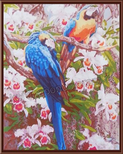 Попугаи и цветы
