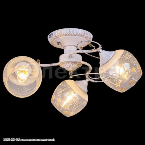 31314-0.3-03A светильник потолочный