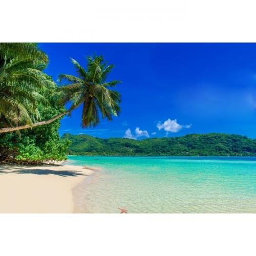 Фотосетка «Пляж», 300 х 158 см, с фотопечатью