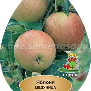 Яблоня Медуница (летний, зеленовато-желтый с красными полосками)