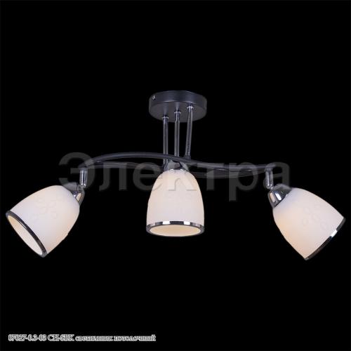 07027-0.3-03 CH-SBK светильник потолочный