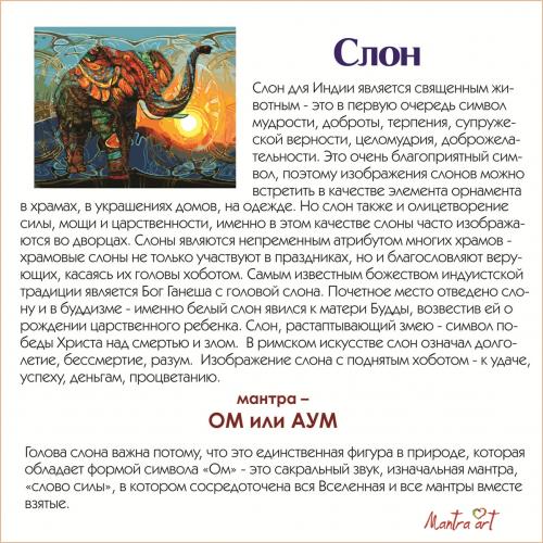 Слон Картины-раскраски по номерам 40х50