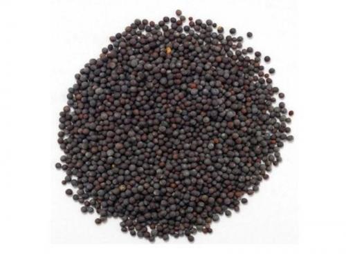 Горчица черная семена