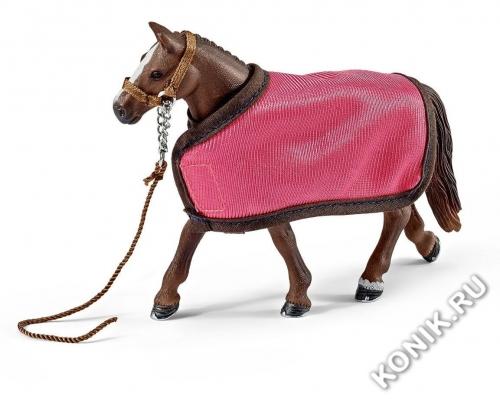 Попона и холтер для лошади
