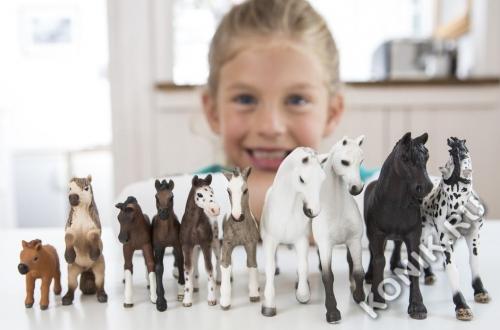 Лошадь Кнабструппер, жеребенок