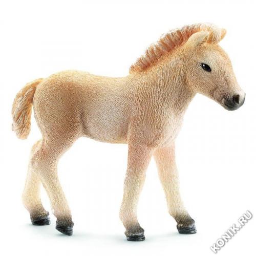 Фиордская лошадь, жеребенок
