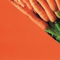 11-морковный