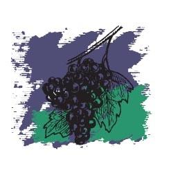 Виноградных косточек масло
