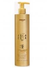 DIKSON. ARGABETA UP. Capelli Colorati / Shampoo Шампунь для окрашенных волос с кератином
