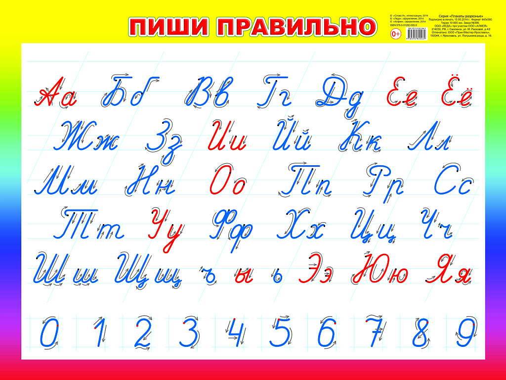 картинки алфавит прописной проведенный черноморском