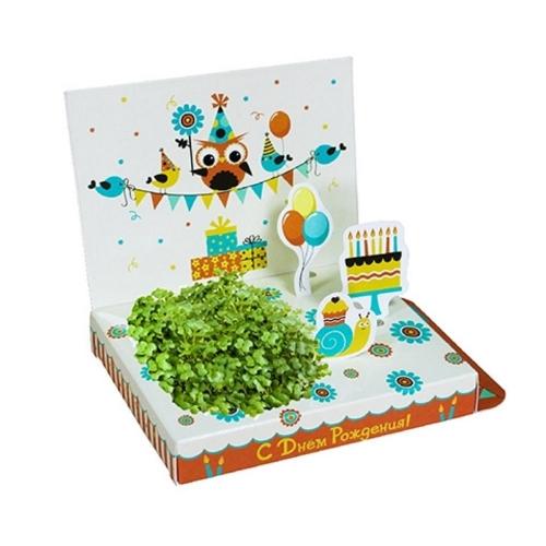 Подарочный набор для выращивания Живая открытка С Днём рождения! Совёнок hps-244