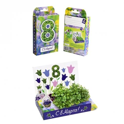 Подарочный набор для выращивания 8 Марта. Колокольчики hps-206